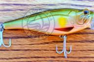 Monster Bass Popper