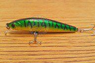 Aquamax Minnow 65