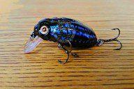 Beetle Buster Crank Bait