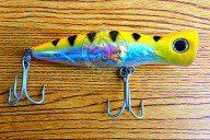Popper Tuna Hunter