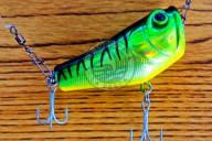 Aquamax Popper 55